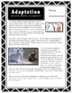 Adaptation // Science // Worksheet // Case Study // PPT // Animal Adaptation