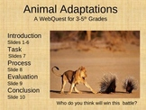 Animal Adaptation Webquest