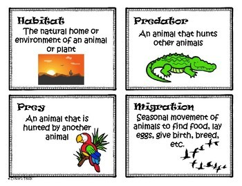 Animal Adaptation Word Wall (Large Cards Included)