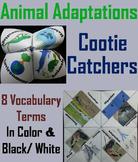 Animal Adaptations Activity: Hibernation, Camouflage, Migration (Ecosystem Unit)