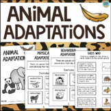 Animal Adaptations Interactive Book
