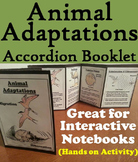 Animal Adaptations Activity (Ecosystem Unit)