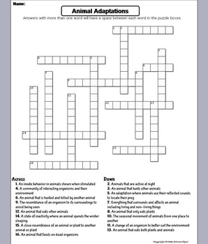animal adaptations worksheet crossword puzzle by science spot tpt. Black Bedroom Furniture Sets. Home Design Ideas