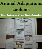 Ecosystem Unit: Animal Adaptations Activity: Hibernation, Camouflage, Migration