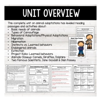 Animal Adaptations BUNDLE- Instincts, Learned Behaviors & Endangered Animals
