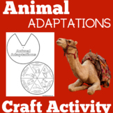 Animal Adaptations Worksheet | Printable