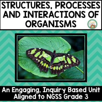 Structures, Processes, and Interactions of Organisms