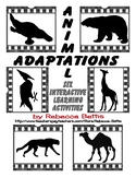 Animal Adaptations Interactive Activities