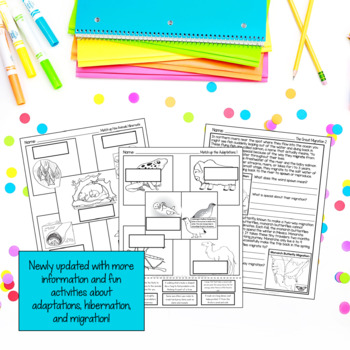 Animal Adaptations with Giraffes, Camels, Dolphins, Gorillas & Jane Goodall