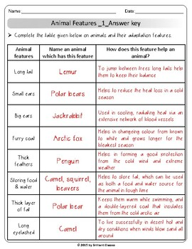 Animal Adaptations: Animal Sort / Definitions / Adaptations Feature Table
