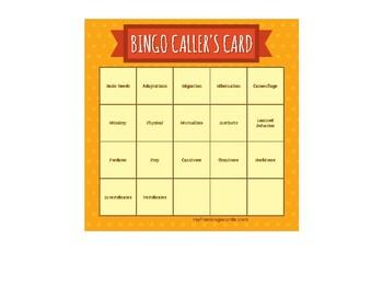 Animal Adaptations Bingo Cards