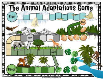Animal Adaptations Board Game