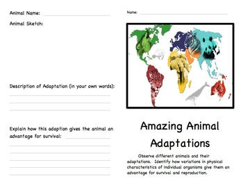 Animal Adaptations: Body Parts