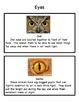 Animal Adaptations: Body Parts