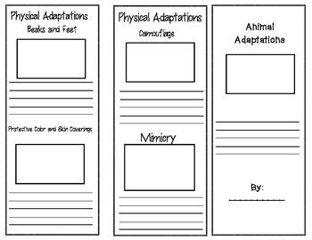 Animal Adaptations Brochure