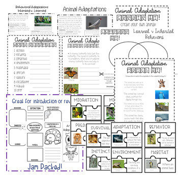 Animal Adaptations Bundle