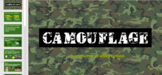 Animal Adaptations- Camouflage Edition Note Slides