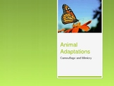 Animal Adaptations - Camouflage and Mimicry - PowerPoint Presentation