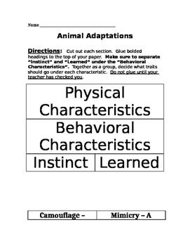 Animal Adaptations Classification