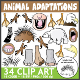 Animal Adaptations Clip Art - SCIENCE