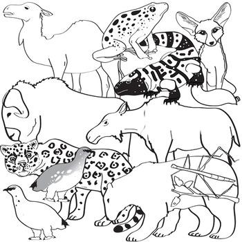 Animal Adaptations Clip Art Set