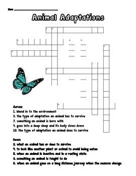 Animal Adaptations Crossword