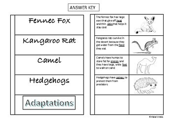Animal Adaptations Cut and Paste