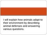 Animal Adaptations-Defenses