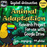 Animal Adaptations Digital Interactive Research Project fo