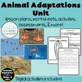 Animal Adaptations {Digital & PDF Included}
