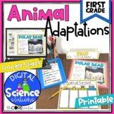 Animal Adaptations   Digital Science Stations   Activities
