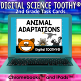Animal Adaptations Digital Science Toothy ® Task Cards | D