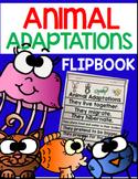 Animal Adaptations (K & 1st Grade)