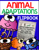Animal Adaptations (K & 1st Grade)