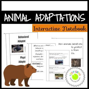 Animal Adaptations Interactive Notebook Foldables Bundle