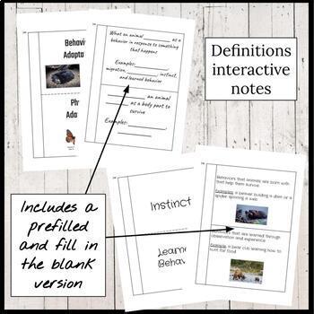 Animal Adaptations Interactive Notebook Foldables Bundle