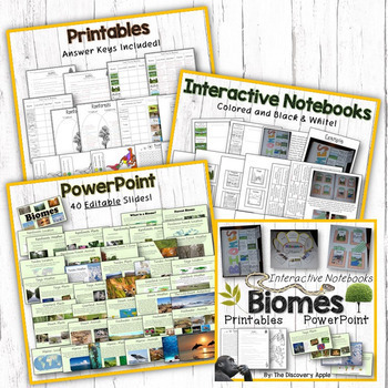 Animal Adaptations, Food Chains, Biomes Huge Science Bundle Special