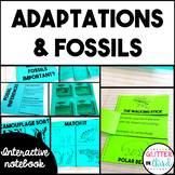 Animal Adaptations & Fossils Science Interactive Notebook