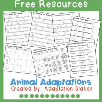 Animal Adaptations Freebie
