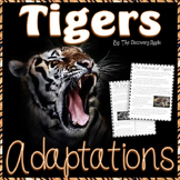 Reading Comprehension Passages and Questions  Animal Adaptations Freebie