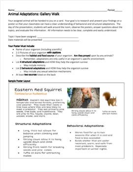 Animal Adaptations: Gallery Walk