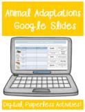 Animal Adaptations Google Classroom Distance Learning