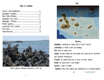 Animal Adaptations Informational Text Galapagos Islands