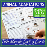 Animal Adaptations Interactive Notebook Foldable and Activities