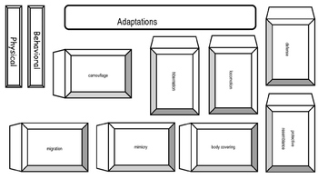 Animal Adaptations Interactive Notebook Activity