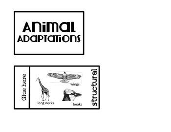 Animal Adaptations Interactive Science Flippy Book