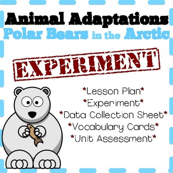 Animal Adaptations:  Lesson Plan and Experiment