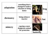 Animal Adaptations Matching Game - 2nd and 3rd Grade VA SOLs