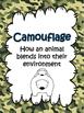 Animal Adaptations {Mimicry, Migration, Hibernation} Activ