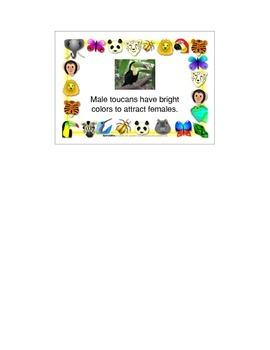Animal Adaptations Mini-book activity